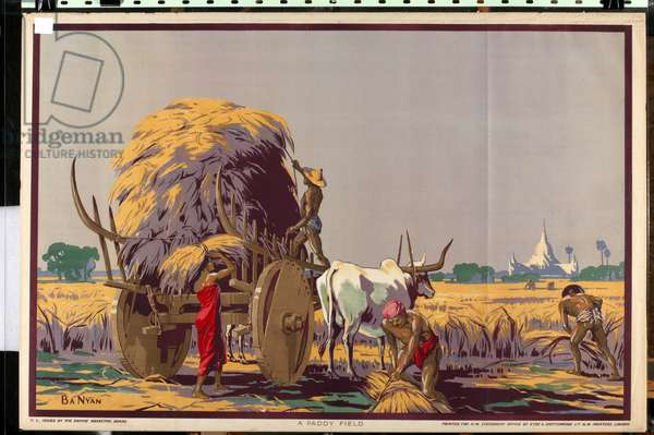 A Paddy Field, from the series 'Burma: A Land of Rich Resources' (colour litho)