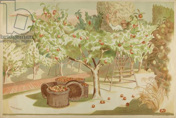 Untitled, from the series 'Home Gardens for Home Markets', 1930 (colour litho)