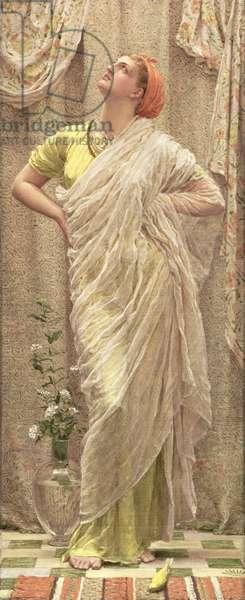 Birds of the Air, c.1879 (oil on canvas)