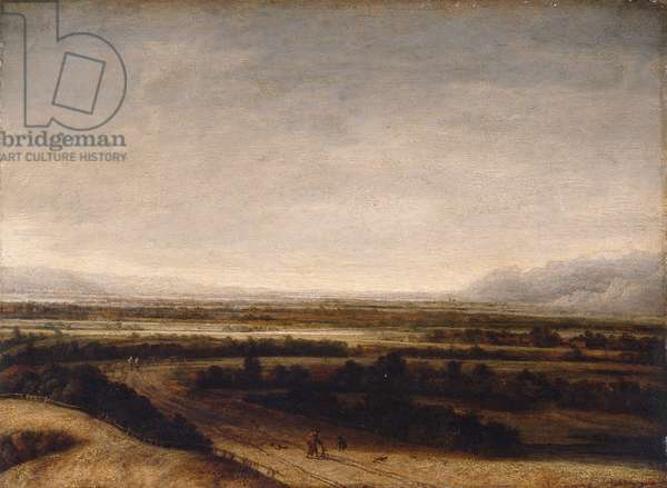 Flat landscape with a view to distant hills, 1648 (oil on panel)