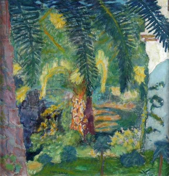 Palm Trees at Le Cannet, c.1924 (oil on canvas)