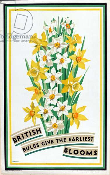 British Bulbs Give the Earliest Blooms, from the series 'British Bulbs for Home Gardens' (colour litho)