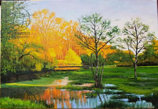 Flooded field in Gironde (oil on canvas)
