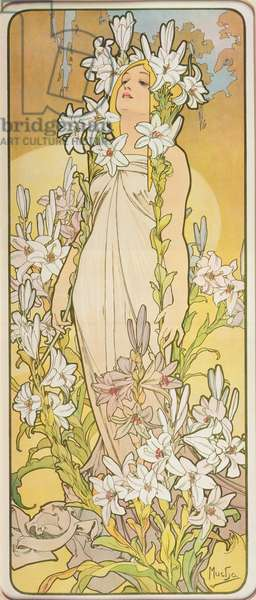 The Flowers: Lily, 1898 (colour litho)