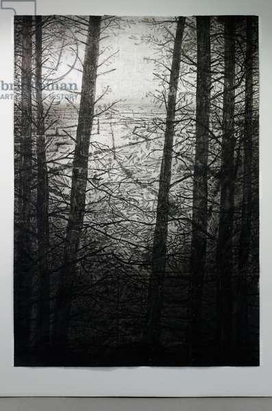 Selva Oscura I, 2014 (acrylic, charcoal, soot, ash, pencil on paper)