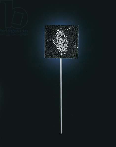 Every Man and Every Woman is a Star, 2008-09 (silver & diamonds)