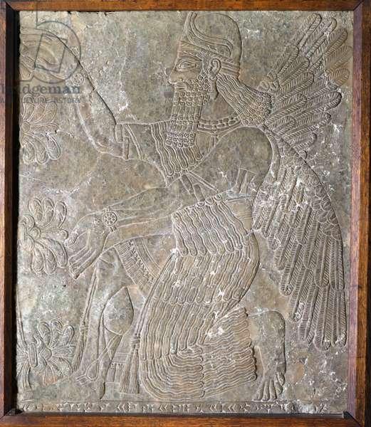 Stone slab depicting King Ashurbanipal I (668-626 BC) (stone)