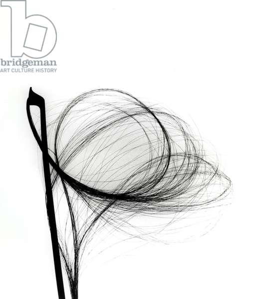 Hair of a violin