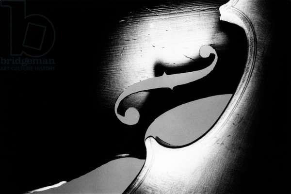 Artistic picture of a violin.