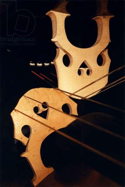 Cello bridges - stringed instrument