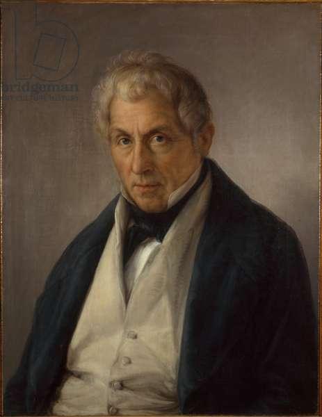Portrait of the Father of the Bass Marini (Ritratto del padre del basso Marini), by Giovanni Carnovali detto il Piccio, c. 1843, 19th century (oil on canvas) 70 x 53,5 cm