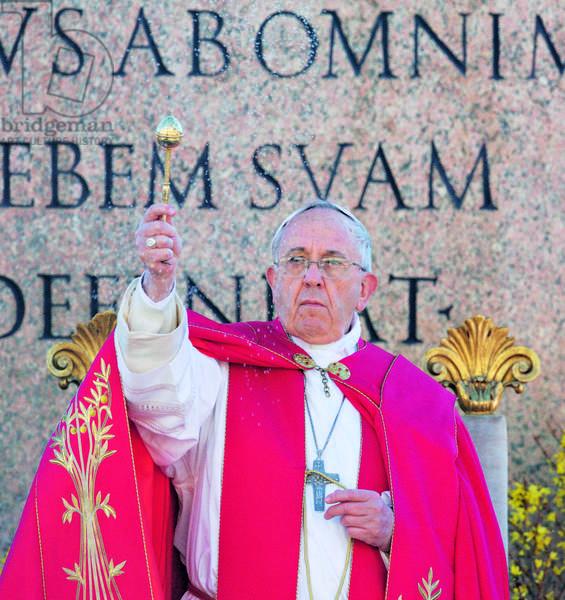 Pope Francis on Palm Sunday (photo)