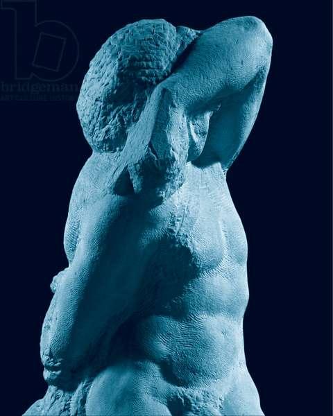 Prisoner (Bearded Slave), 1519 - 1530 (marble)