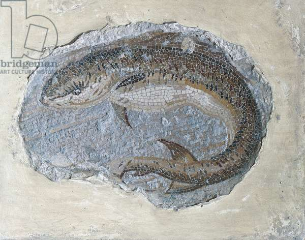 Tope (Galeo), 1st Century, polychrome mosaic