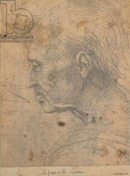Male profile, (black pencil)