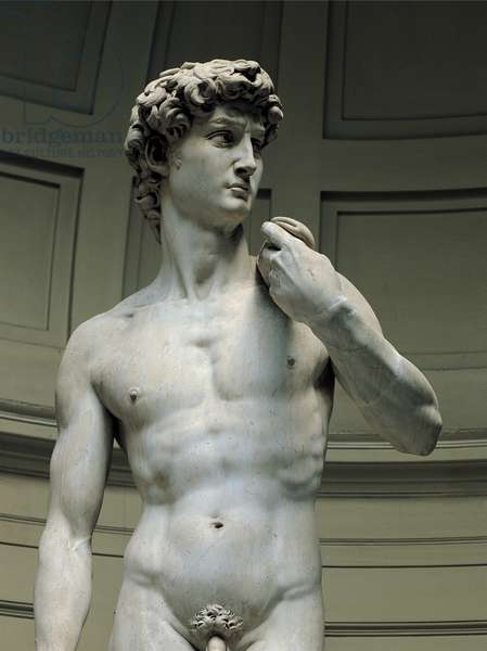 David, 1501 - 1504 (full relief marble)