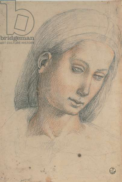 Female Head, 1505 (black and red pencil on white paper)