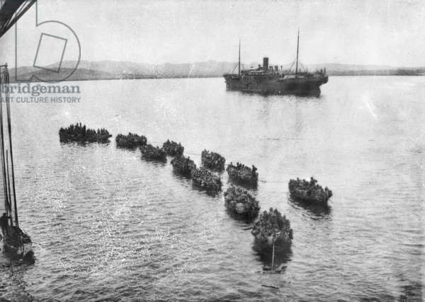 Australian troops being towed ashore in lighters to land at Anzac Cove, Gallipoli. In the background is the transport ship, 1915 (b/w photo)