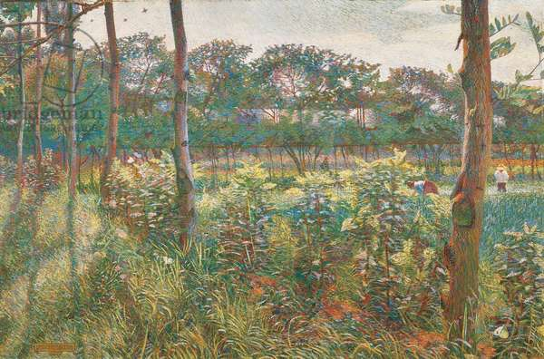 Lombard Countryside, 1908 (oil on canvas)