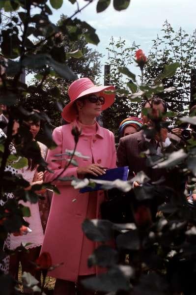 Grace kelly in a pink dress in a garden, Monza, Italy