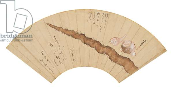 Types of roots and tubers, by Katsushika Nakajima known as Hokusai, 1816, 19th Century, coloured ink and gofun on paper