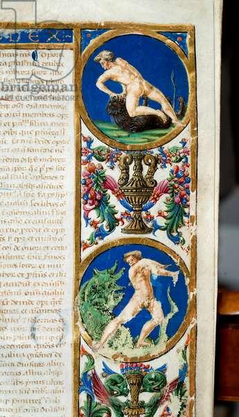 De Animalibus by Albertus Magnus, 15th century (miniature)