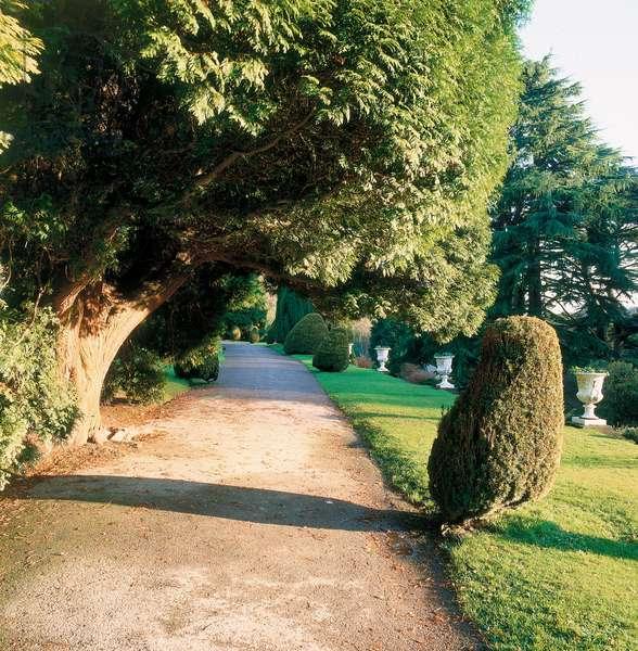 Alton Towers Gardens, 19th Century