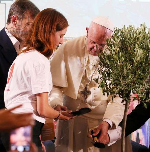 Pope Francis, Italy, 2017 (photo)