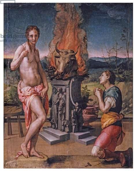 Pigmalione and Galatea, 1529-1530 (oil on canvas)