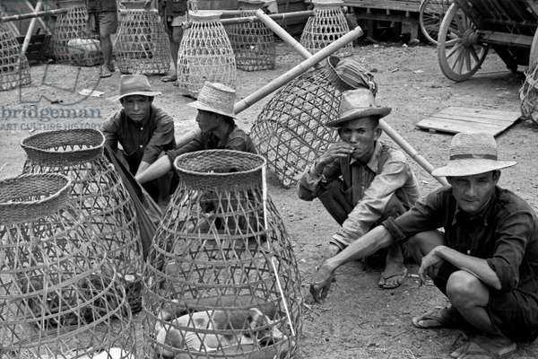 Thai men resting beside baskets for carrying pigs, Bangkok, 1961 (b/w photo)