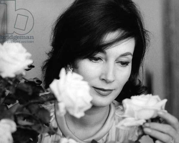 Valentina Cortese observing a rose, 1960s (b/w photo)