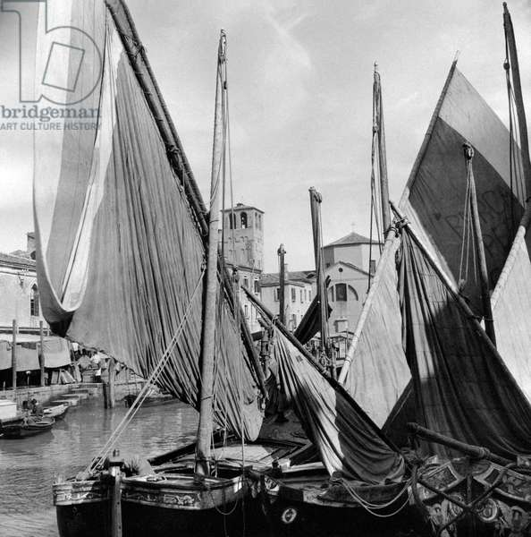 Some fishermens' boats docked at a pier, Chioggia, Italy, March 1954 (b/w photo)