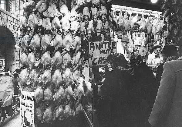 Butcher stall at Piazza delle Erbe street market in Padua, Padua, Italy, 1973 (photo)