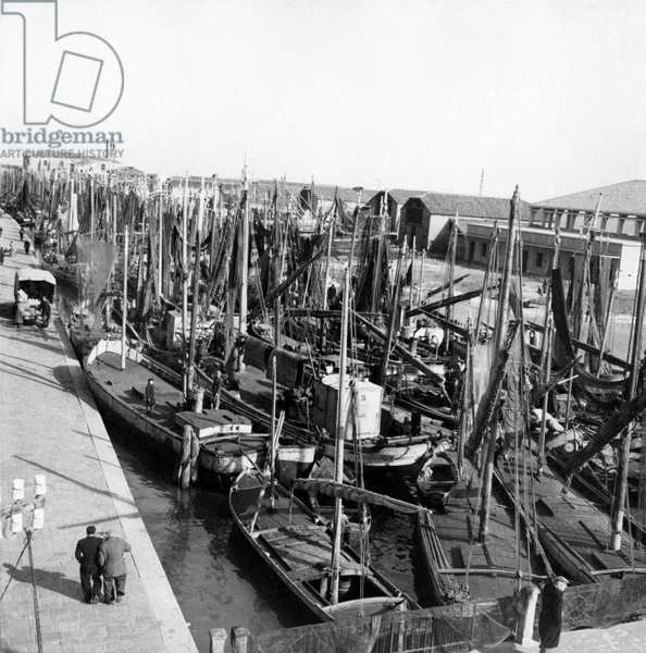 Many fishing boats are docked at the pier of Chioggia, Chioggia, Italy, March 1954 (b/w photo)