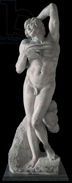 Dying Slave, by Michelangelo Buonarroti, 1513 - 1516, 16th Century, marble sculpture