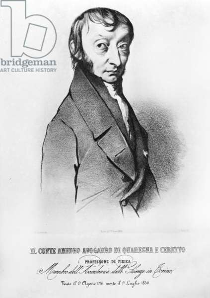 Portrait of Amedeo Avogadro, 19th Century (carving)