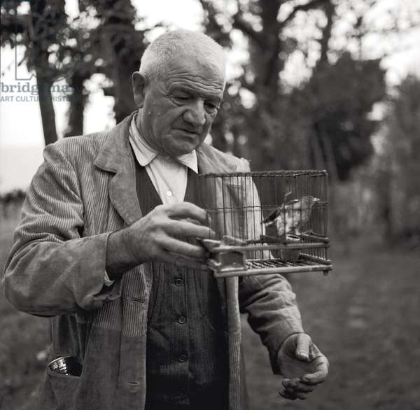 Zaverio Rocalli, the pope's brother, with a bird cage