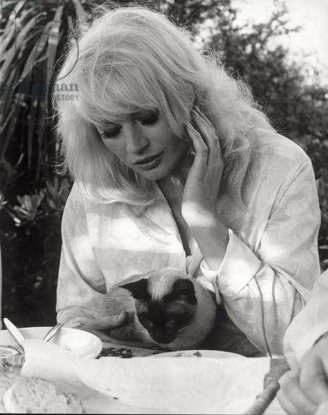 Portrait of Anita Ekberg, 1966 (b/w photo)