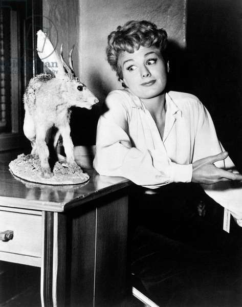 Shelley Winters looking puzzled at a stuffed animal
