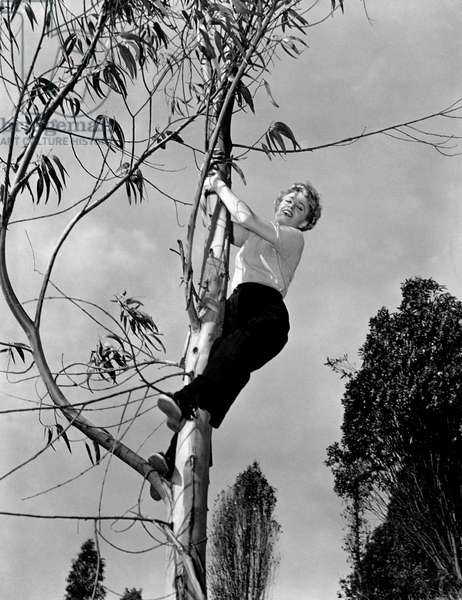 Shelley Winters clutching a tree trunk