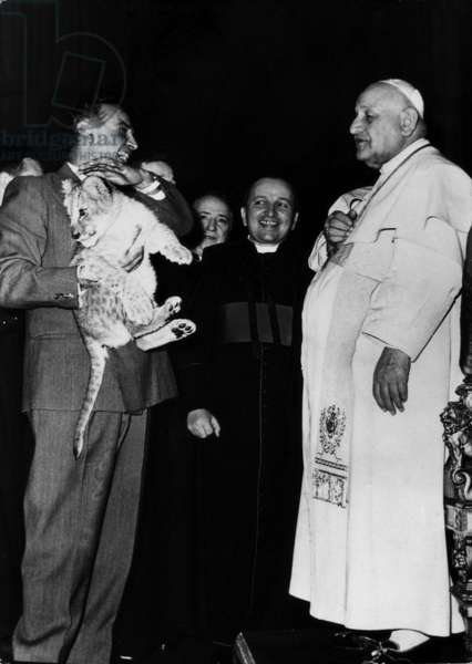 John XXIII watching a lion cub