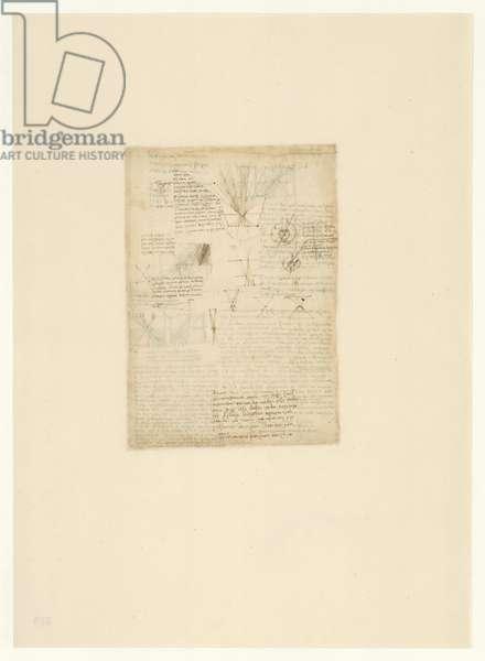 Codex Atlanticus, sheet 519 verso
