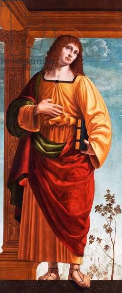 Saint John the Evangelist, detail from The Madonna and Child with Saint John the Evangelist and Saint John the Baptist, 1510-20 (oil on panel)