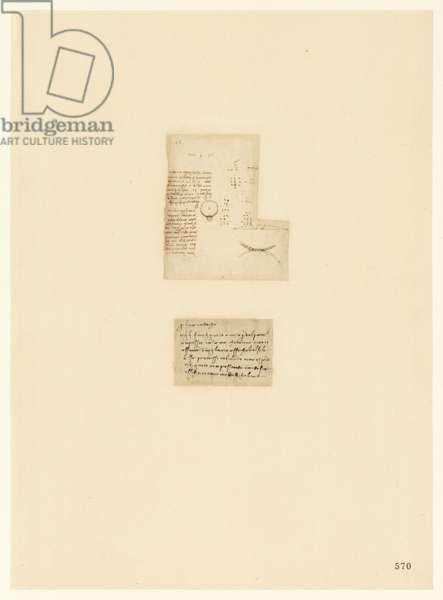 Codex Atlanticus, sheet 570 recto