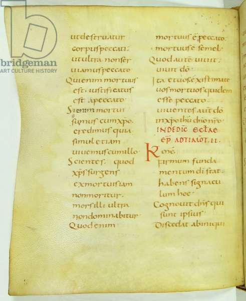 Page from Epistles for the Feast of Saint Simplician and the Dedication of the Church (vellum)