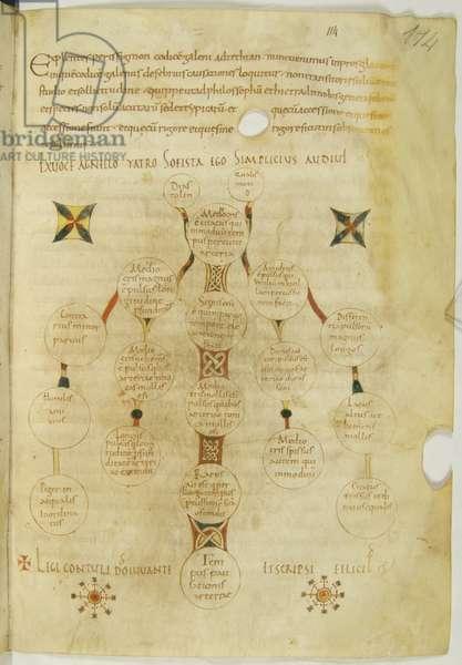 Commentarius in Galeni De pulsibus ad tirones