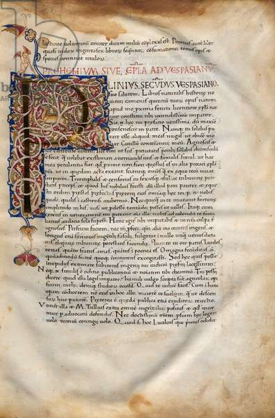 Illuminated page with initial from Vita Plinii