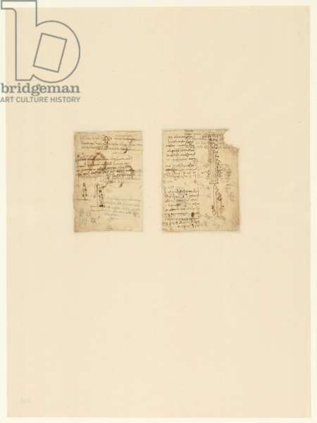 Codex Atlanticus, sheet 330 verso