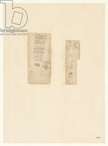 Codex Atlanticus, sheet 781 recto