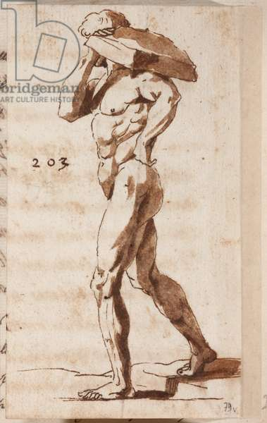Leonardo da Vinci's opinion about how to draw perspectives